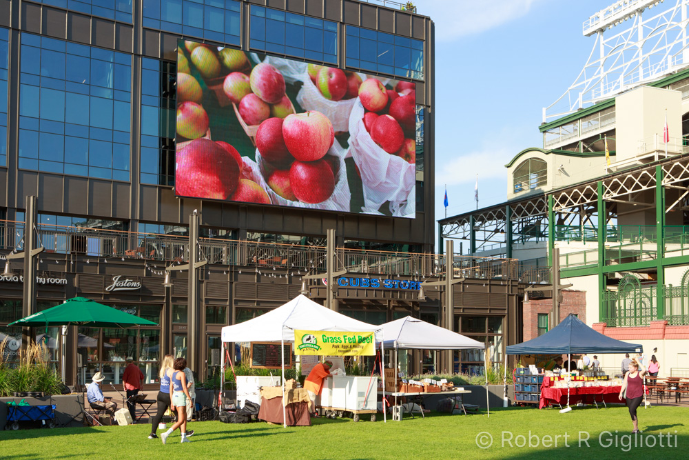 The Park at Wrigley, Farmers Market Photo by RRG Photography